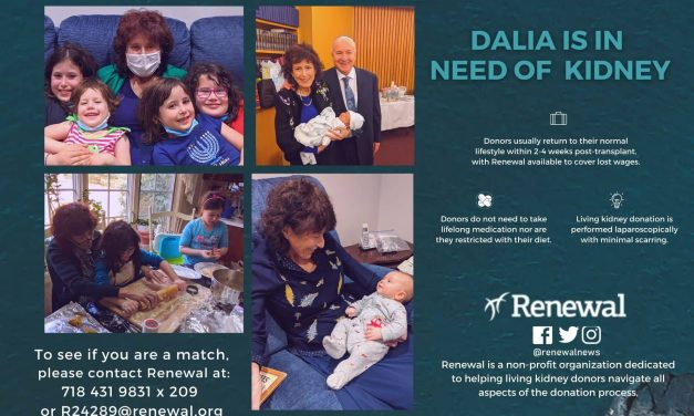 Dalia needs a living kidney donor!
